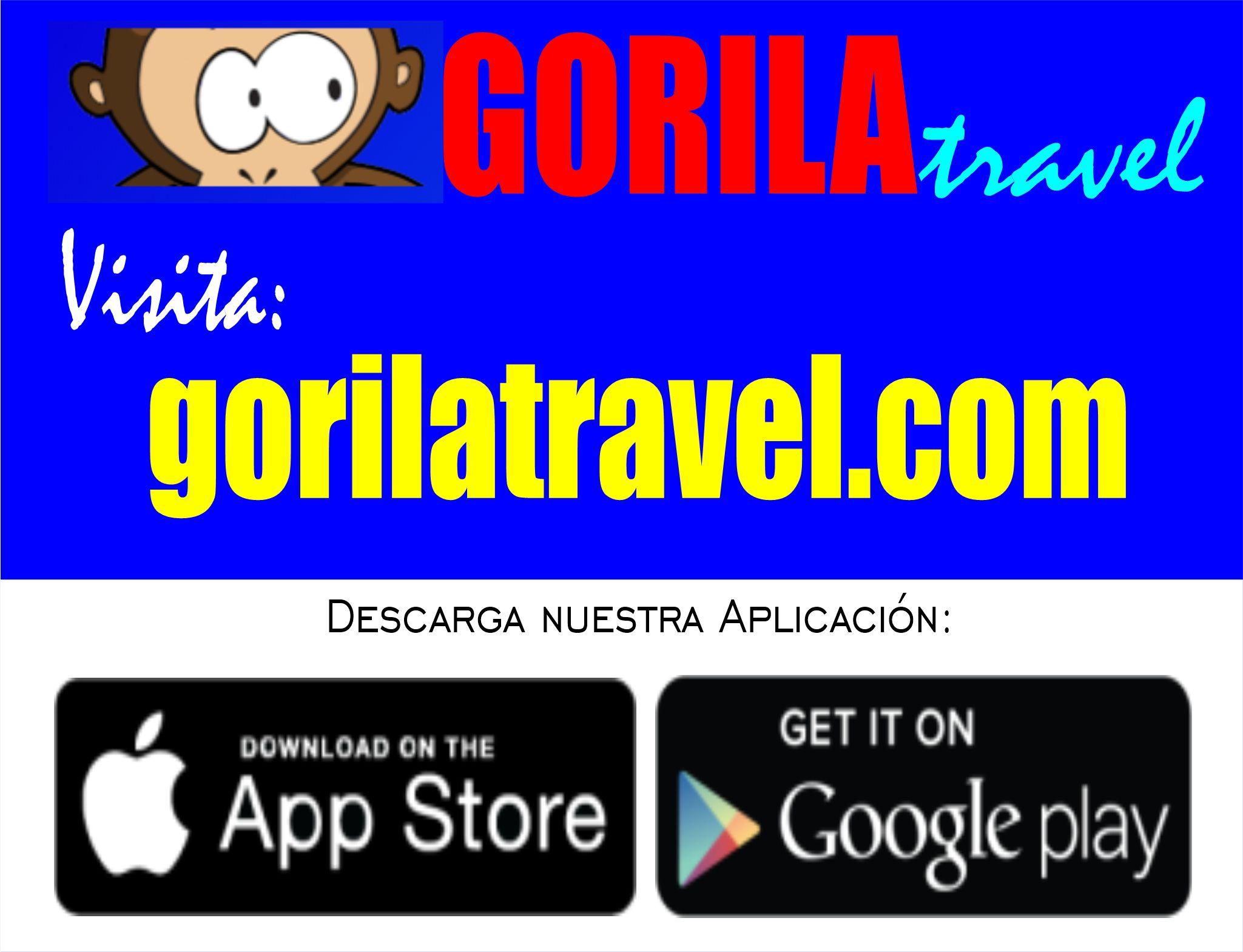 Gorila Travel Agency